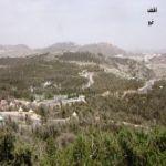 القرية .. هموم وشجون ..   / حامد علي عبد الرحمن